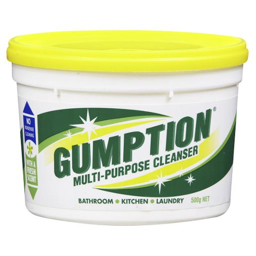 PASTE CLEANER TUB 500GM